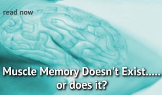 muscle memory header